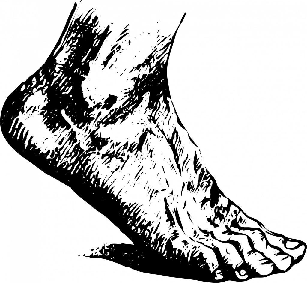 human-foot-1443445545PJ9